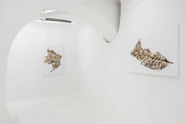 Timea Anita Oravecz. Paradise Lost. Exhibition view at Ex Elettrofonica, Roma 2018