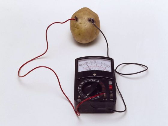 Víctor Grippo, Energy of a Potato (or Untitled or Energy), 1972. Tate © The estate of Victor Grippo