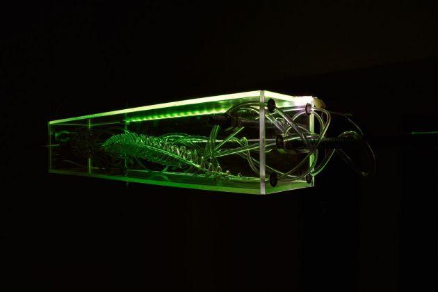 Alexandra Koumantaki, Luminous Pois, Plexiglas, incisione su plexiglas, bulloni, luci led, asta in acciaio, cavi in acciaio, fibra ottica, microprocessore. Dimensioni variabili. 2018
