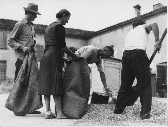 Giuseppe Morandi, I tol so el melgot a la sapa i de l'era de Balestrer, 1963