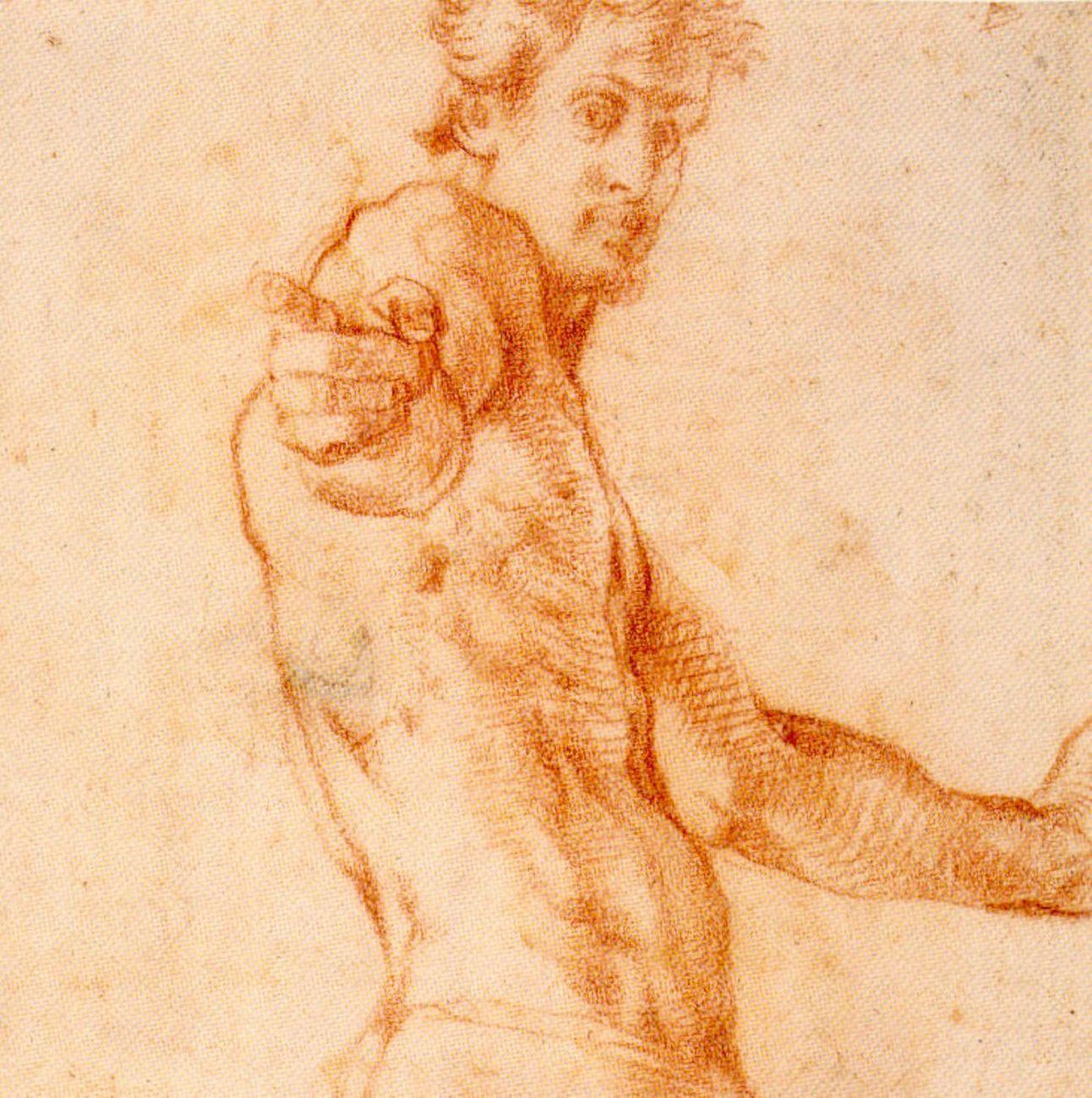 Jacopo Carucci detto Pontormo, Autoritratto a mezza figura