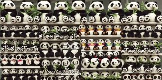 Liu Bolin, Shelves. Panda, 2011. Courtesy Boxart, Verona