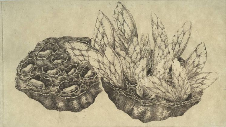 Michela Concetti. Ficta Substantia. Courtesy l'artista & A.muse Gallery, Torino