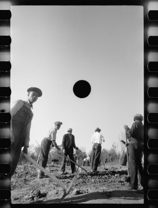Carl Mydans Untitled photo, possibly related to: Transients clearing land. Prince George's County, Maryland November 1935 Digital print from scanned 35mm b&w negative Library of Congress, Prints & Photographs Division, FSA/OWI Collection,