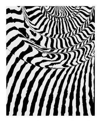 FRANCO GRIGNANI Grafia spiraliforme e rigatura parallela, 1963 sperimentale ottico ai sali di bromuro d'argento, 29,8x24,1 cm courtesy 10 A.M.ART, Milano