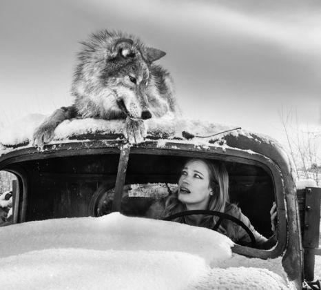"""A Street Car Named Desire Stampa Fine Art Misure 52"""" x 56"""" inch (132 cm x 142 cm) Edizione 2/12  Montana, USA – 2018"""
