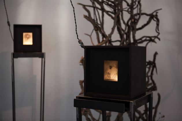 Alessandra Calò. Secret Garden. Installation view at Cubo Gallery, Parma 2018