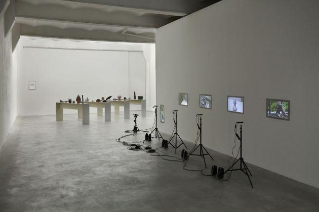 Chiara Camoni, The story always come later, 2016, exhibition view, SpazioA, Pistoia