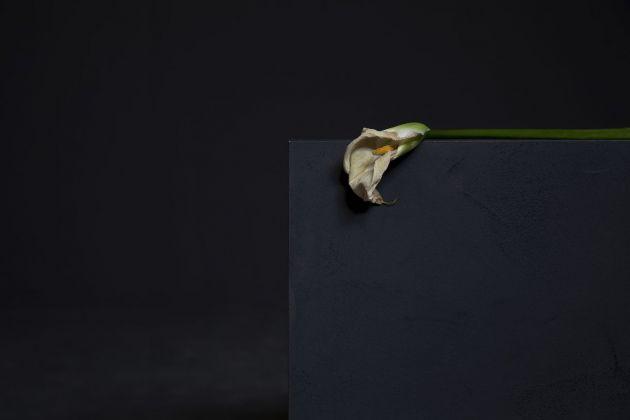 Giulia Marchi, La mort de Marat, 2016