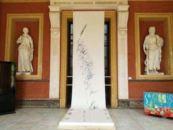Manifesta 12, Malin Franzén, Palermo Herbal, Orto Botanico. Ph. Desirée Maida