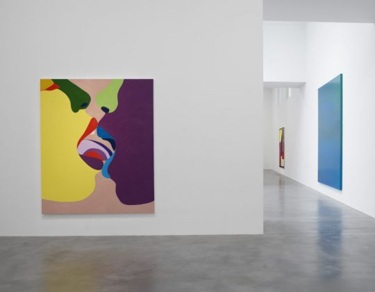 Installation view True Colours, Courtesy Newport Street Gallery