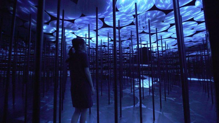 MORI Building Digital Art Museum. teamLab Borderless. Untitled