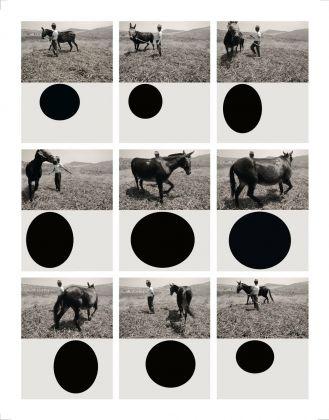 Mario Cresci, Geometria naturalis, 2013