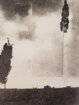Rä di Martino, Open Trees (particolare)