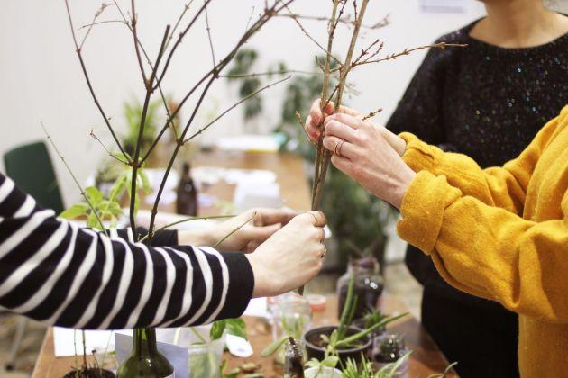 SEEDS, PlantSwap event, 2016