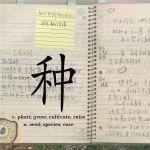 Yinchuan Biennale 2018. Xu Tan, Social Botany, project, 2013 . Courtesy artist