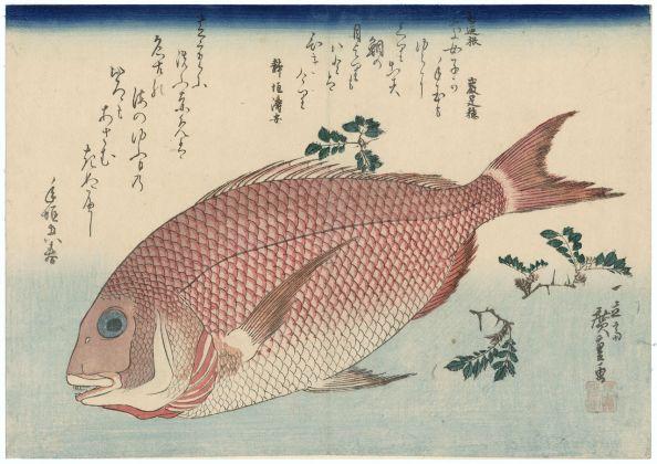 Utagawa Hiroshige Pagro e pepe nero giapponese Serie: Grandi pesci 1832-33 circa 265 x 370 mm silografia policroma Museum of Fine Arts, Boston - William Sturgis Bigelow Collection