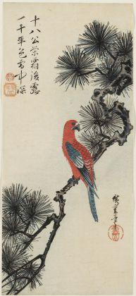 Utagawa Hiroshige Pappagallo su un ramo di pino 1830-35 circa 383 x 171 mm silografia policroma Museum of Fine Arts, Boston - William Sturgis Bigelow Collection