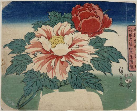 Utagawa Hiroshige Peonie 1853, secondo mese 219 x 270 mm silografia policroma Museum of Fine Arts, Boston - Asiatic Curator's Fund