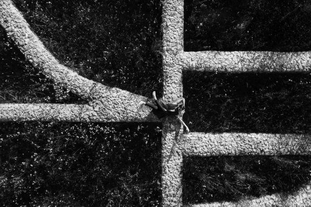 Lorenzo Cicconi Massi, Capri dal drone