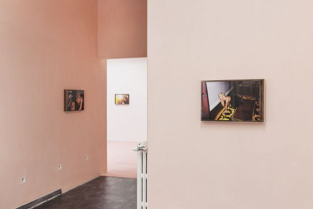 Yves Scherer. The Last Of The English Roses. Exibition view at Galleriapiù, Bologna 2018