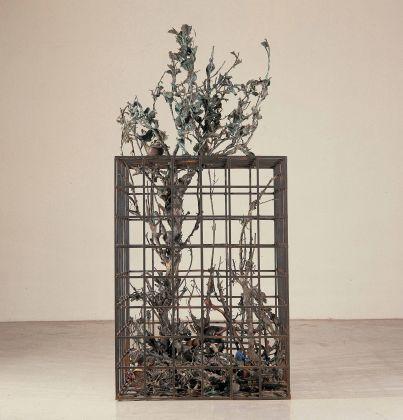 Alik Cavaliere, W la libertà, 1976-77