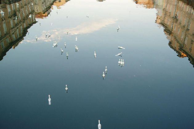 Gruppo78, Specchio d'Acqua, 2006