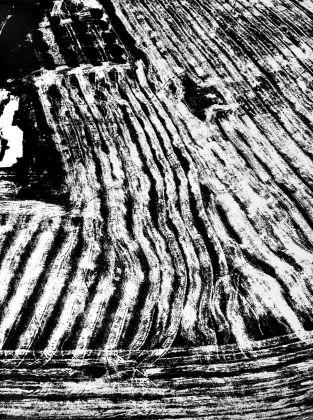 Mario Giacomelli, Presa di coscienza sulla natura, 1976-80. Courtesy Archivio Mario Giacomelli - Rita Giacomelli