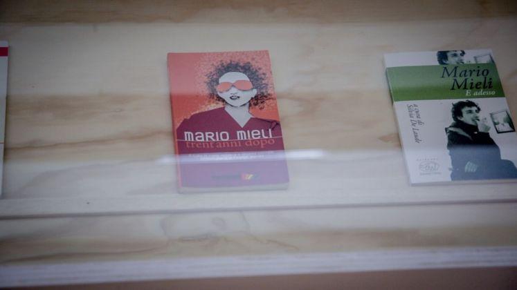 Mario Mieli. Mostra e performance fotografica. Photo credits Thomas Montalti per Centrale Fies, 2018