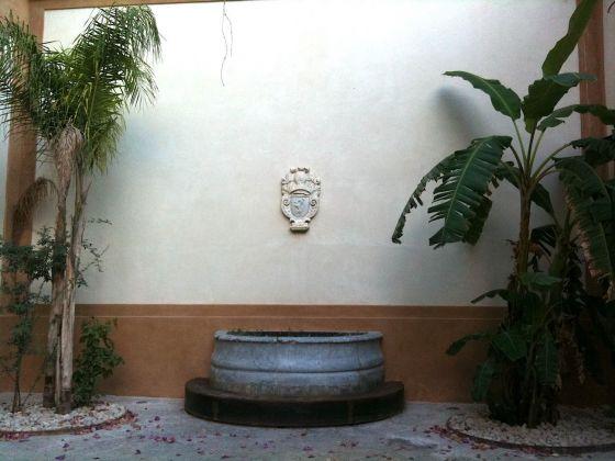 Palermo botanica. Cortile di Palazzo De Seta. Photo Claudia Zanfi