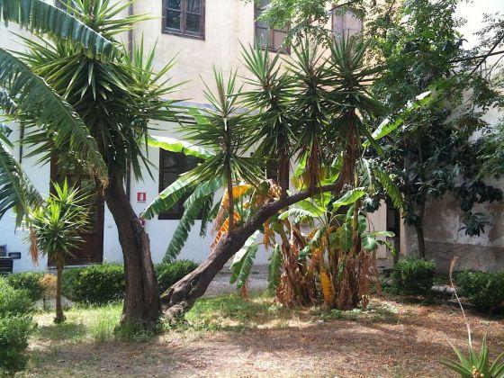 Palermo botanica. Giardino Santissima Trinità. Photo Claudia Zanfi