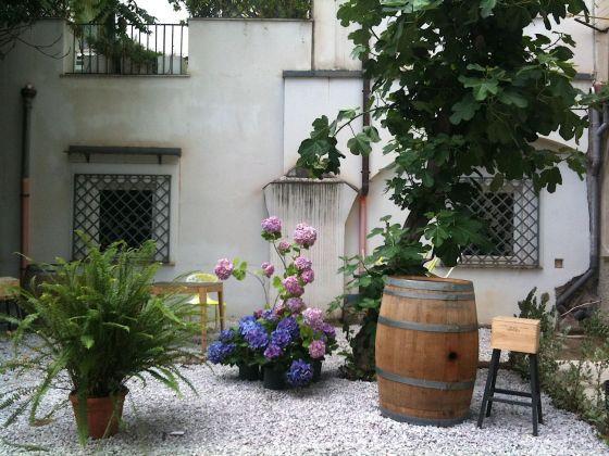 Palermo botanica. Giardino Teatro Garidbaldi. Photo Claudia Zanfi