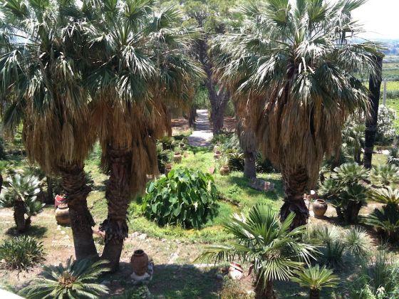Palermo botanica. Giardino Tenuta dello Zucco. Photo Claudia Zanfi