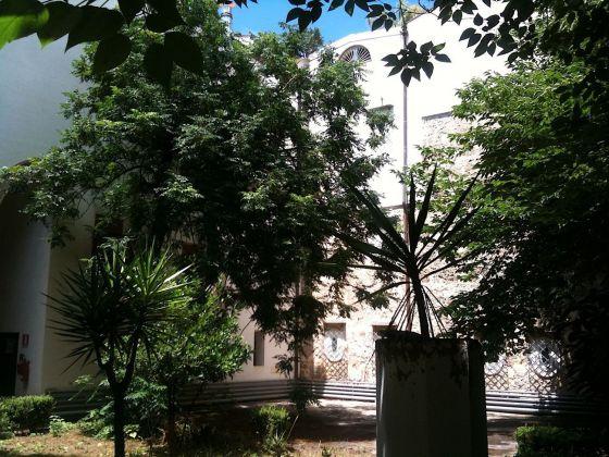 Palermo botanica. Giardino Villa Giulia. Photo Claudia Zanfi