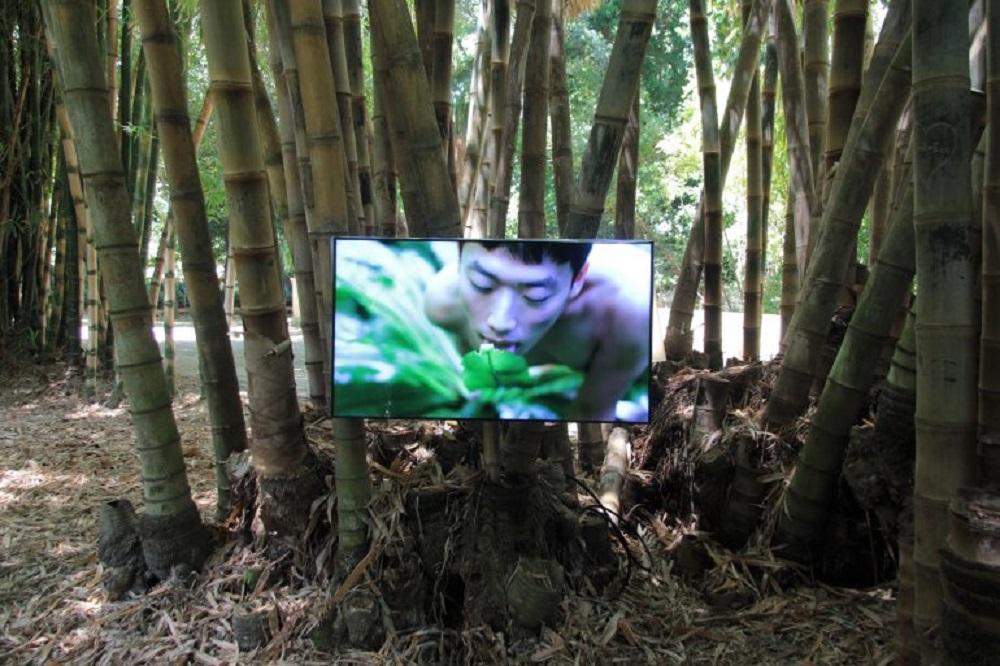 Zheng Bo, Pteridophilia (2016 – in corso), video. Ph. Manifesta12