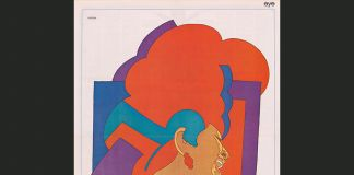 Milton Glaser, Aretha Franklin, National Portrait Gallery, Washington