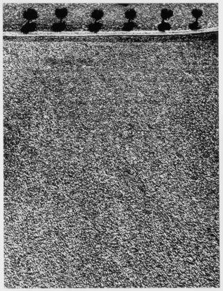 Da Presa di Coscienza sulla natura, 1977-2000, La campagna marchigiana