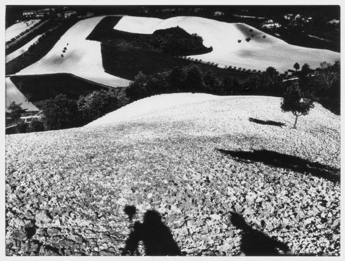 Da Presa di Coscienza sulla natura, 1977 2000, La campagna marchigiana