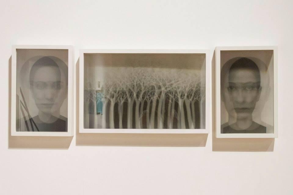 Un'opera di Jolanda Spagno