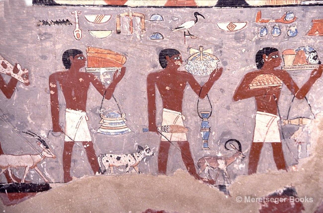 La tomba di Mehu, immagini dal libro di Altenmuller