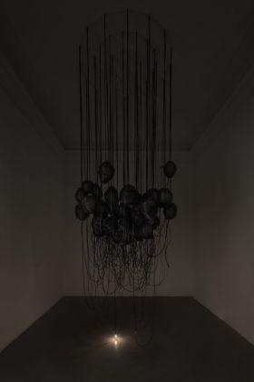 Paolo Grassino, Per sedurre gli insetti, 2015-18