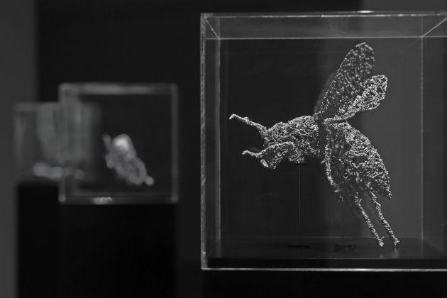 Ryoichi Kurokawa, renature..insecta #2 [ prototype ], 2015. © l'artista. Courtesy Espacio Fundación Telefónica Lima