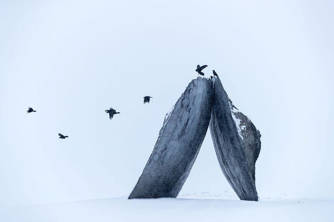 Tippet Rise Art Center, Fishtail, Montana. Photo Iwan Baan
