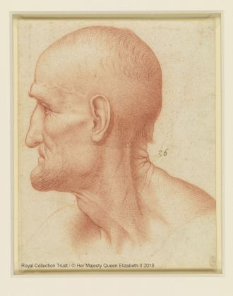 Francesco Melzi (1493 – 1567), attribuito a. Testa di san Simone, ca. 1510-20