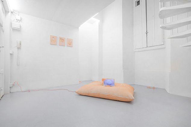 Gioia Di Girolamo. Assisted Service for Miracle Reactions. Exhibition view at Dimora Artica, Milano 2018. Photo Massimiliano Costantini