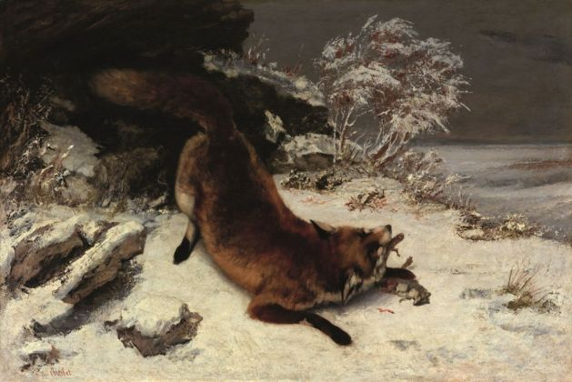 Gustave Courbet, Volpe nella neve, 1860. Dallas Museum of Art, Foundation for the Arts Collection, Mrs. John B. O'Hara Fund