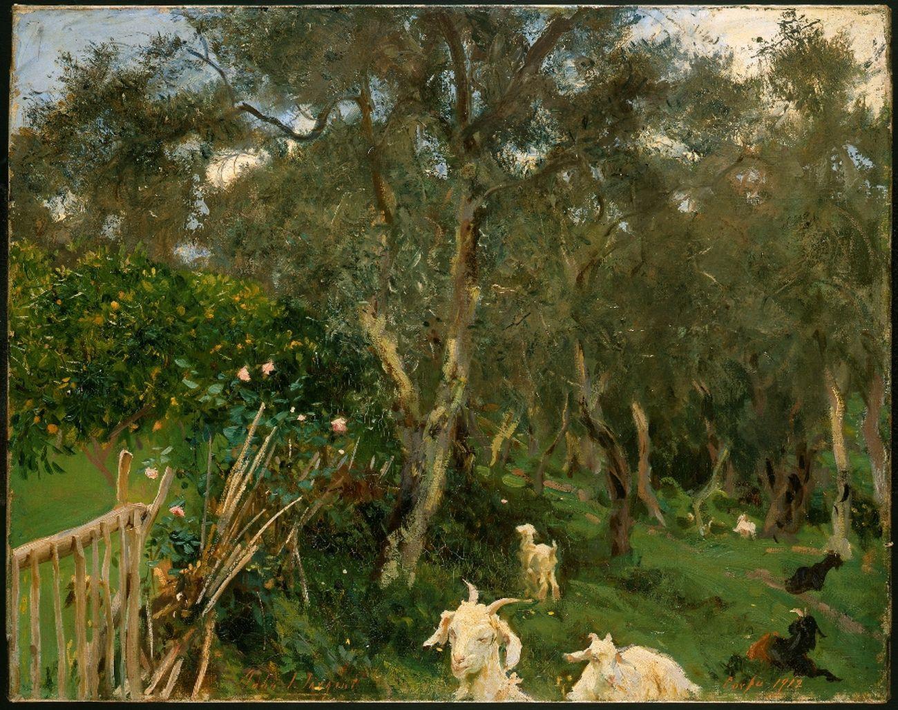 John Singer Sargent, Olives in Corfu, 1909 ca. © The Fitzwilliam Museum, Cambridge