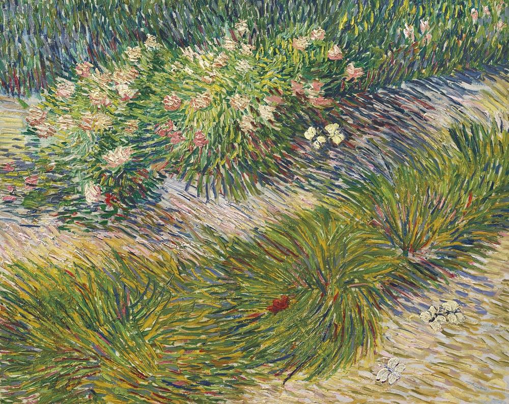 Vincent van Gogh Coin de Jardin avec Papillons