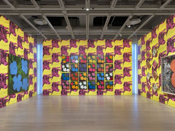 Installation view of Andy Warhol – From A to B and Back Again (Whitney Museum of American Art, New York, November 12, 2018-March 31, 2019). From left to right, top to bottom: Flowers, 1964; Flowers, 1964; Flowers, 1964; Flowers, 1964; Flowers, 1964; Flowers, 1964; Flowers, 1964; Flowers, 1964; Flowers, 1964; Flowers, 1964; Flowers, 1964; Flowers, 1964; Flowers, 1964; Flowers, 1964; Flowers, 1964; Flowers, 1964; Flowers, 1964; Flowers, 1964; Flowers, 1964; Flowers, 1964; Flowers, 1964; Flowers, 1964; Flowers, 1964; Flowers, 1964; Flowers, 1964; Flowers [Large Flowers], 1964-65. Photograph by Ron Amstutz. © 2018 The Andy Warhol Foundation for the Visual Arts, Inc. / Licensed by Artists Rights Society (ARS), New York