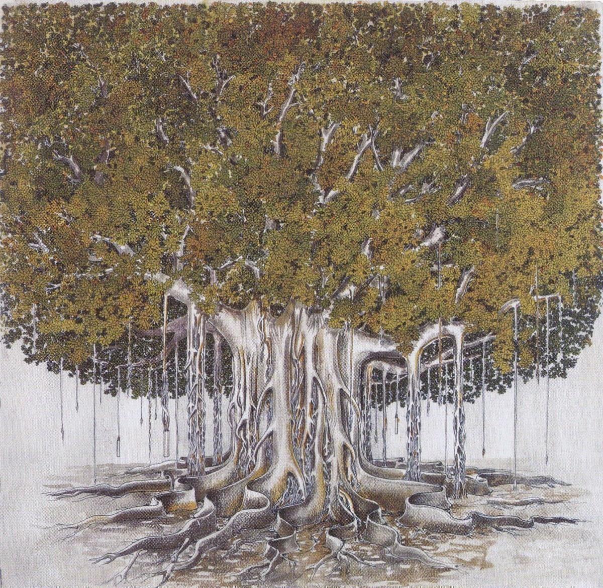 Bruno Caruso, Il Ficus, disegno acquerellato, 1980